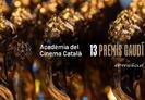 Presència de films amb suport MEDIA entre els nominats als XIII Premis Gaudí